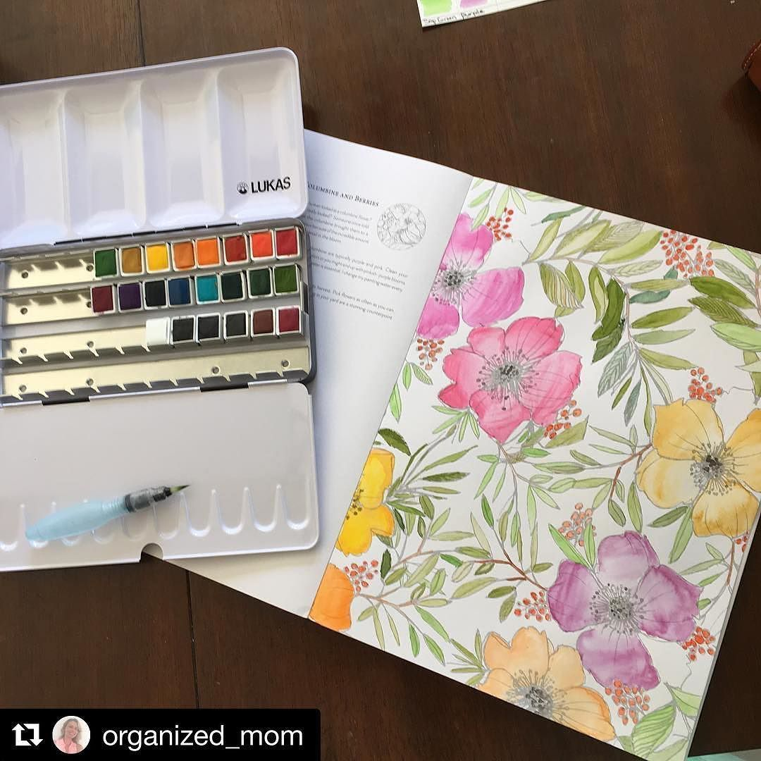 #Repost @organized_mom with @repostapp  Not to bad for my 1st one! #watercoloring #watercolors #Lukas #lukaswatercolor #lukaswatercolors #watercoloringbook #watercoloringpainting #watercolorflowers #adultcoloringbook