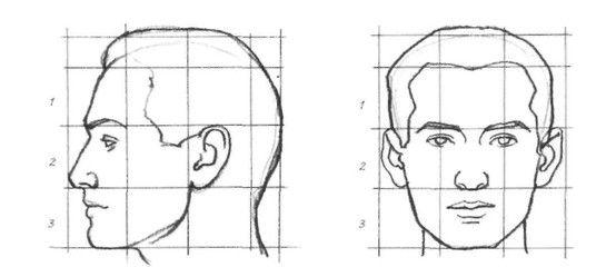 Rostos Desenhos: Proporções Do Rosto Humano Pra Desenhar E Modelar