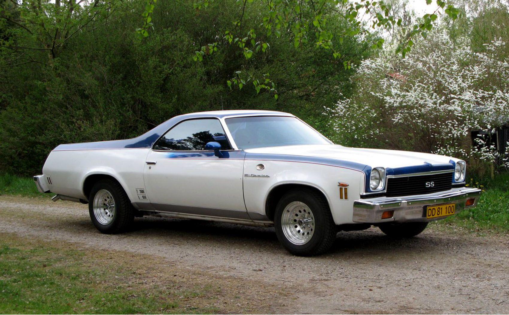 1973 El Camino Arabalar