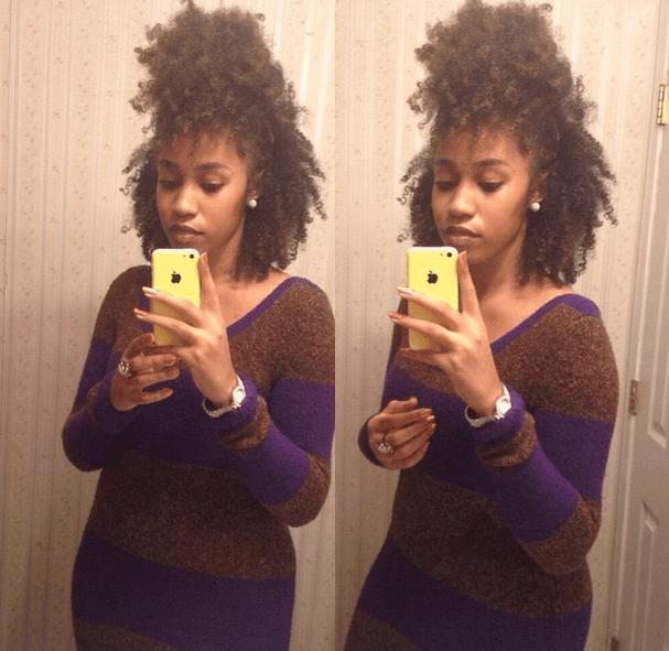 Sheneka From Georgia 3c4a Natural Hair Style Icon Hair And