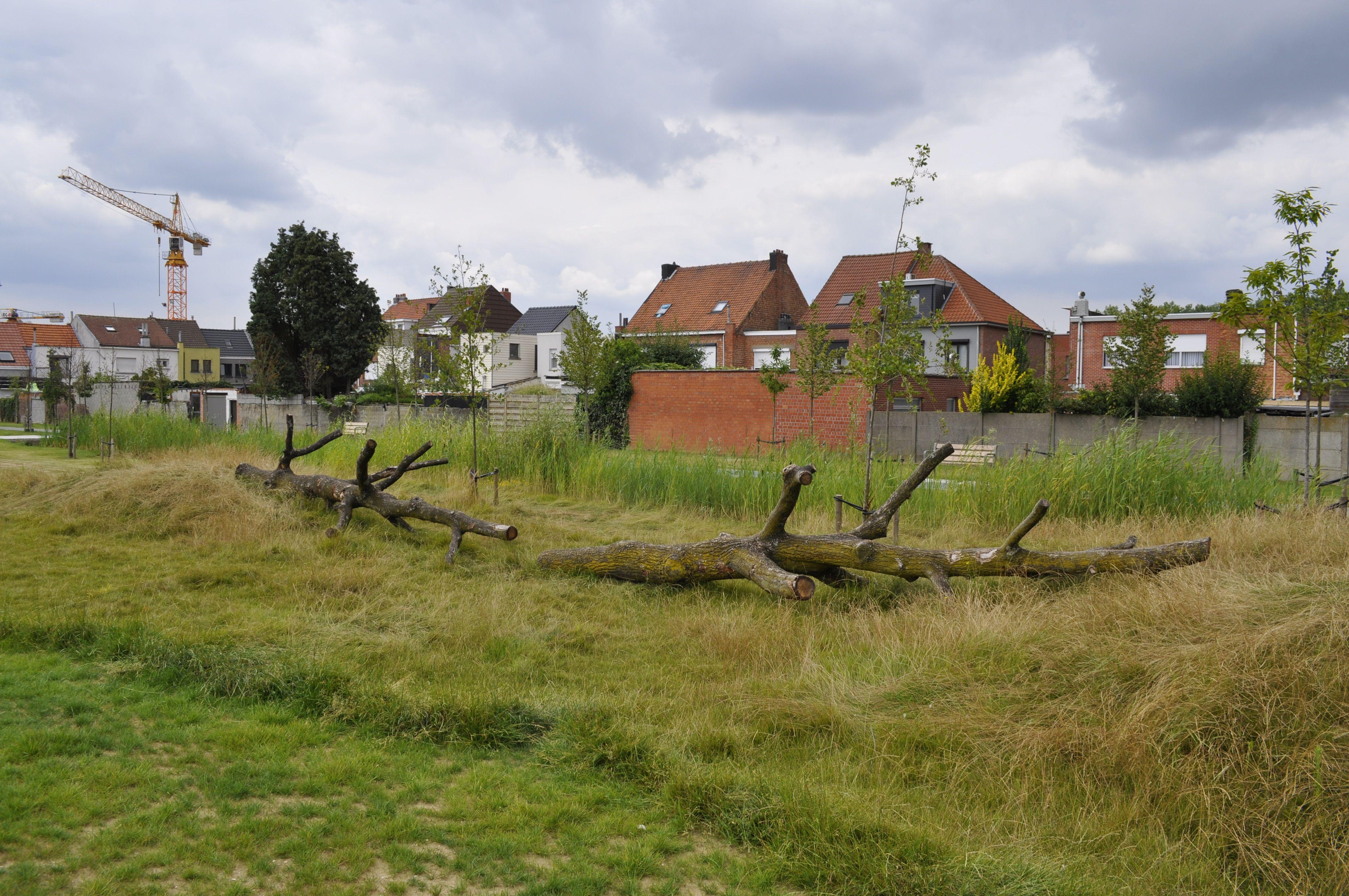 Hydepark Hoboken Antwerpen Antwerpen, Natuur