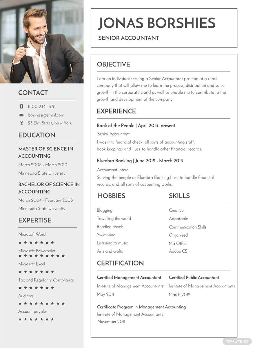 Free Professional Banking Resume Cv template