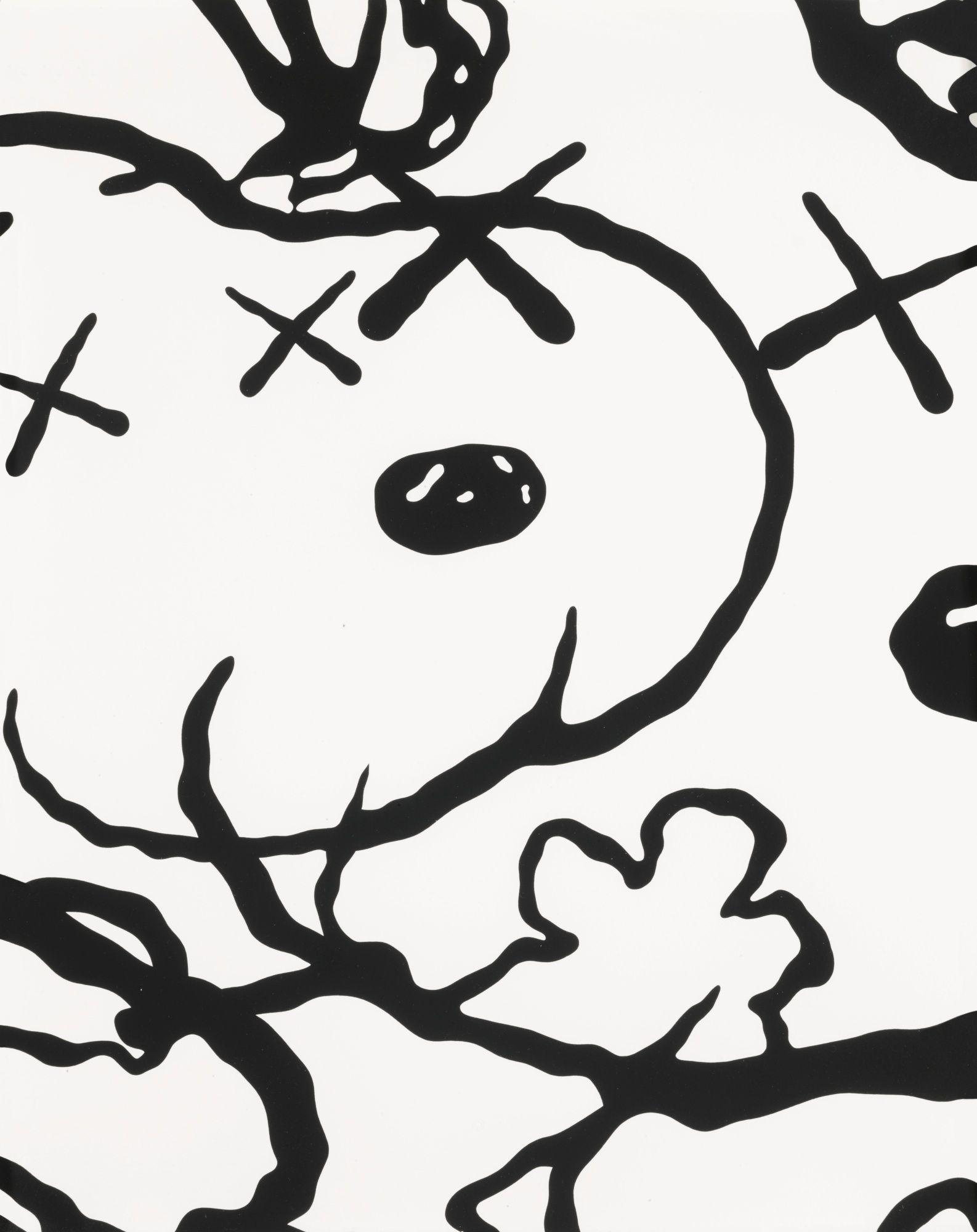 Download Kaws Wallpaper Snoopy Kaws wallpaper, Snoopy