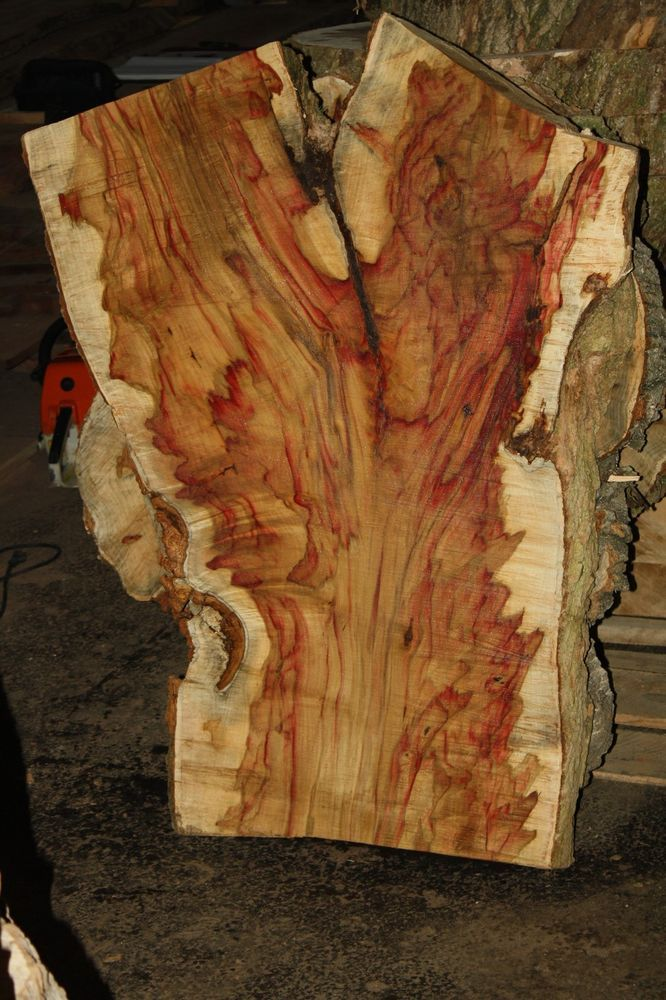 Boxelder Wood Www Pixshark Com Images Galleries With A