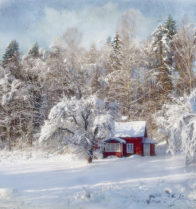 Winter in the country by bessula on flickr winter wonderland winter in the country by bessula on flickr publicscrutiny Image collections