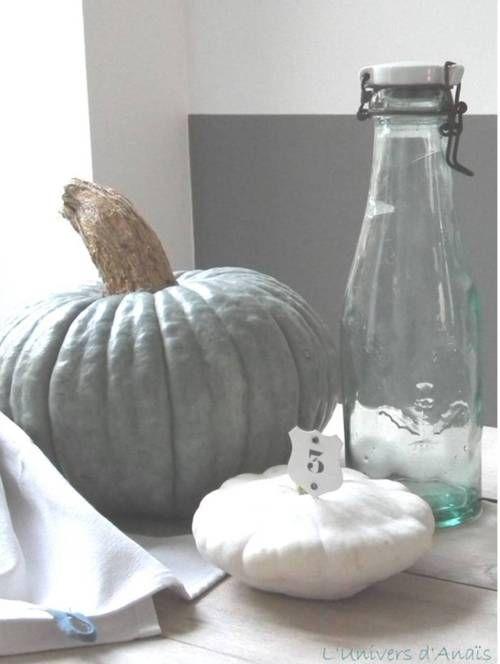 citrouille grise citrouilles pinterest gris idee. Black Bedroom Furniture Sets. Home Design Ideas