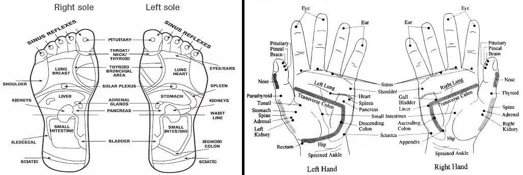 Pin on reflexology, acupressure and massage