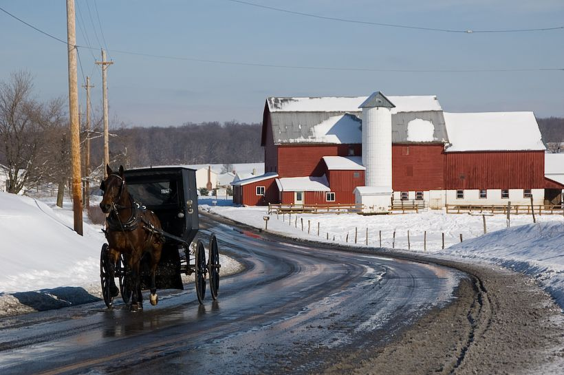 Marijuana Greenhouse coming to Amish Ohio Town