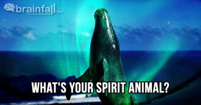 My Spirit Animal Is The Whale Take This Quiz To Find Out Yours Whats Your Spirit Animal Your Spirit Animal Spirit Animal