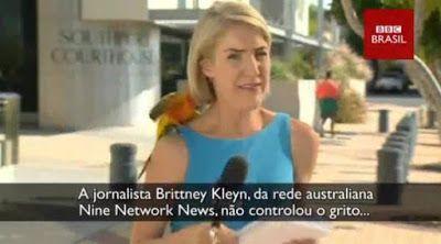 Galdinosaqua no Mundo Animal : Repórter australiana 'surta' após ave pousar em seu ombro