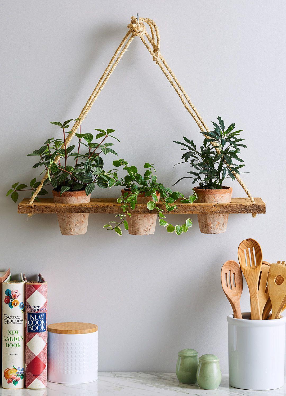 23 Creative Diy Indoor Hanging Plant Holders Hanging Plants