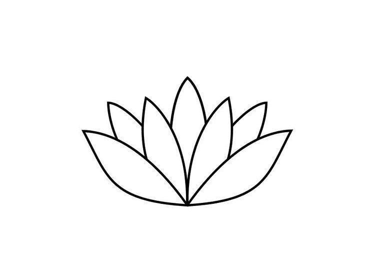afbeeldingsresultaat voor lotusbloem tekening