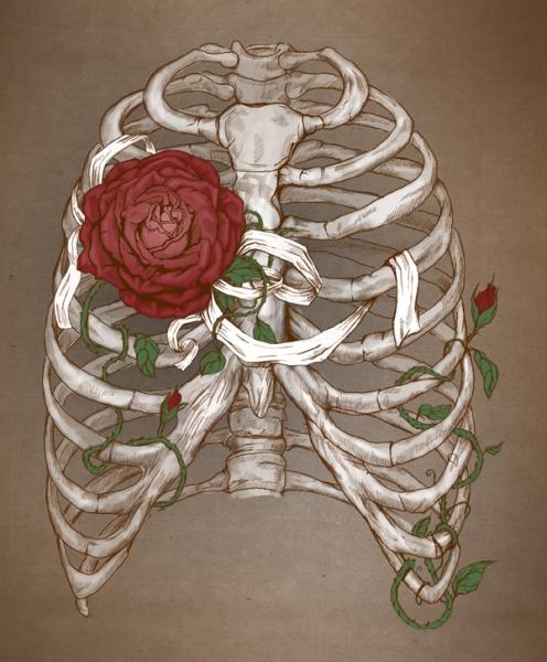 Arte anatómico de Katerina Eremeeva | Corazón | Pinterest | Rib cage ...