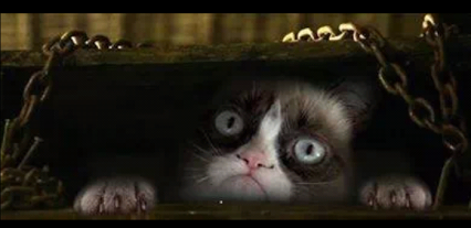 Grumpy Cat Goes One Step Further To Evil Cat