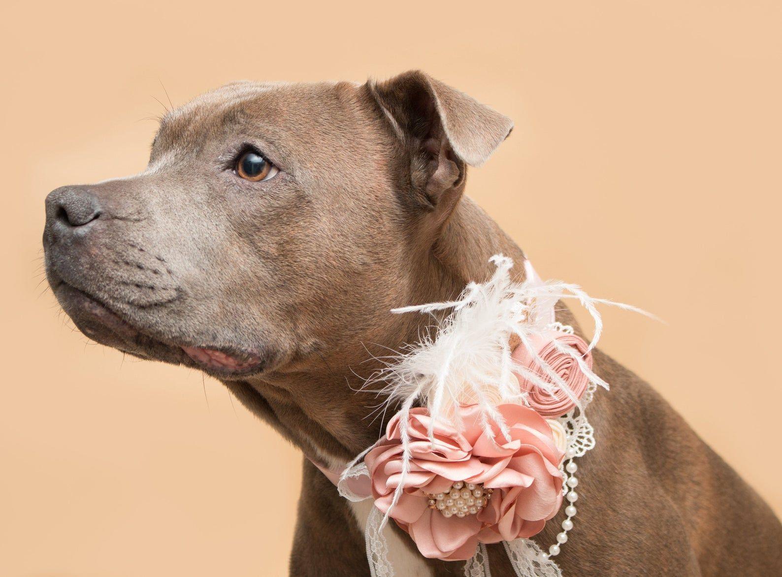 Dog Flower Burlap Flower Collar Accessory