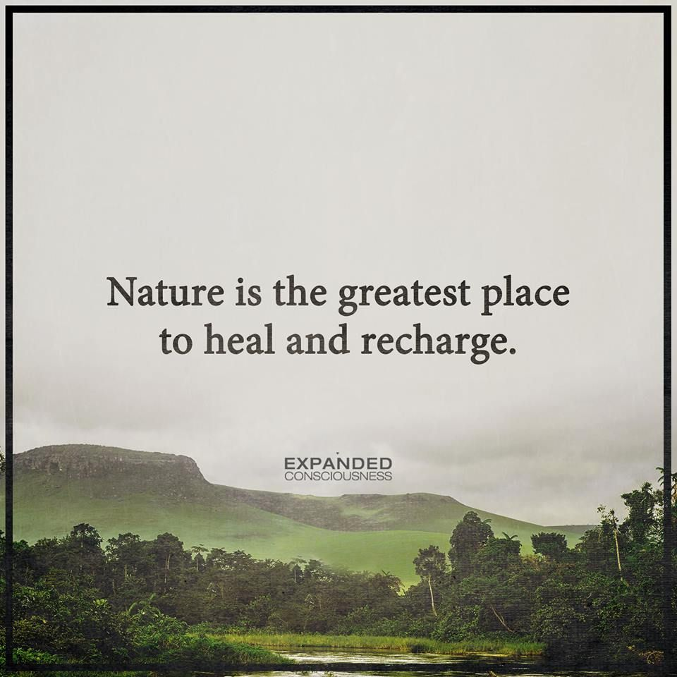 Nature Heals Recharge Healing Quotes Inspiring Quotes About Life Nature Quotes