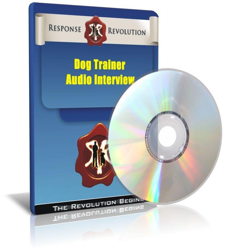 Training Labrador Retrievers