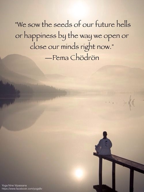 Pema Chodron Quotes Adorable Open Your Mind And Heart With Compassion  Positive Thinking