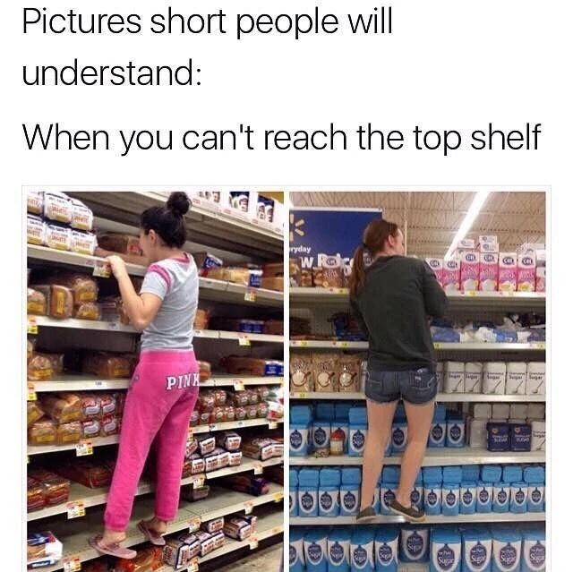 51 Fresh Af Memes For A Funny Day With Images Short People