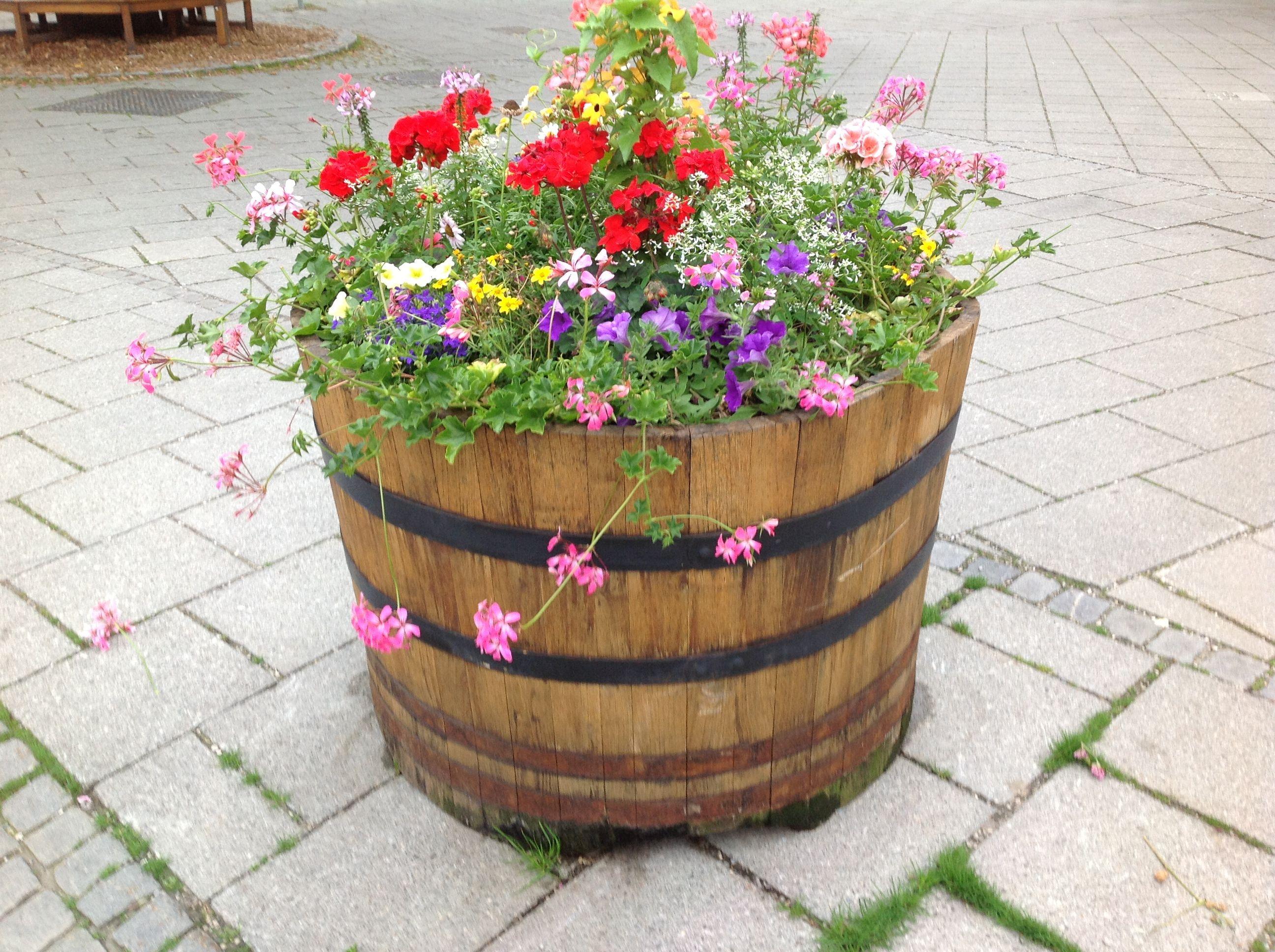 Alemanha é flores...