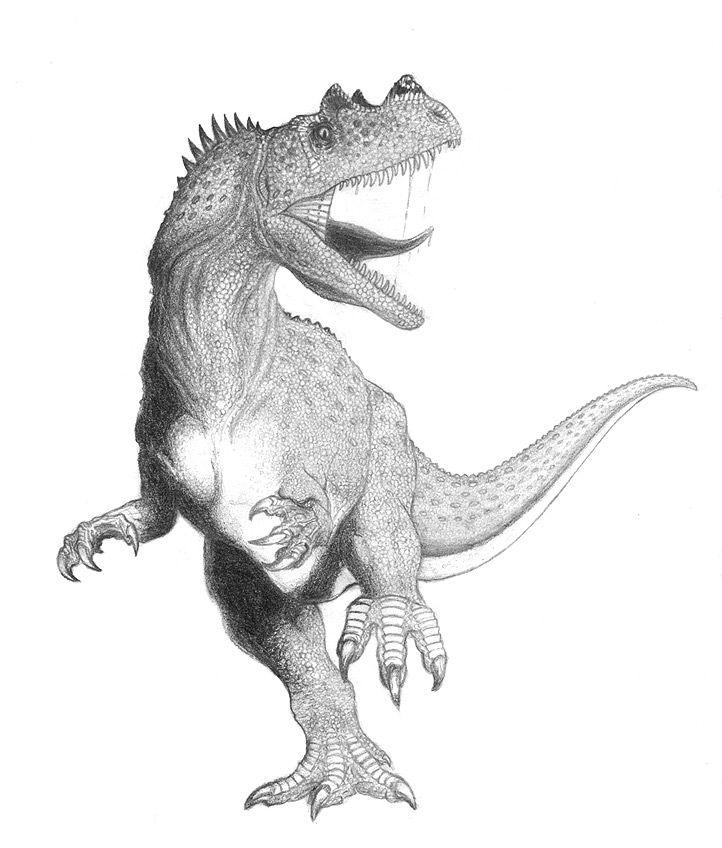 Ceratosaurus By Alnus On Deviantart Dinosaur Posters Cute