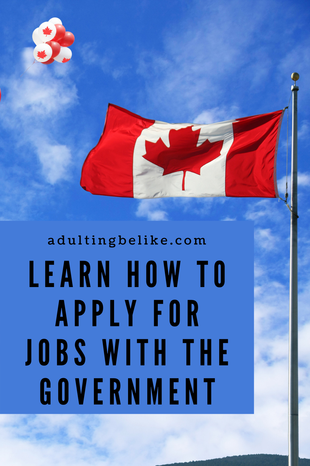 Learn How to Apply For Jobs with the Canadian Federal Government   Career Path