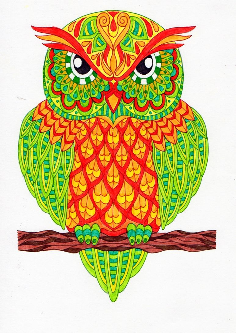Owl zentangle coloring   Animal zentangle coloring pages   Pinterest ...