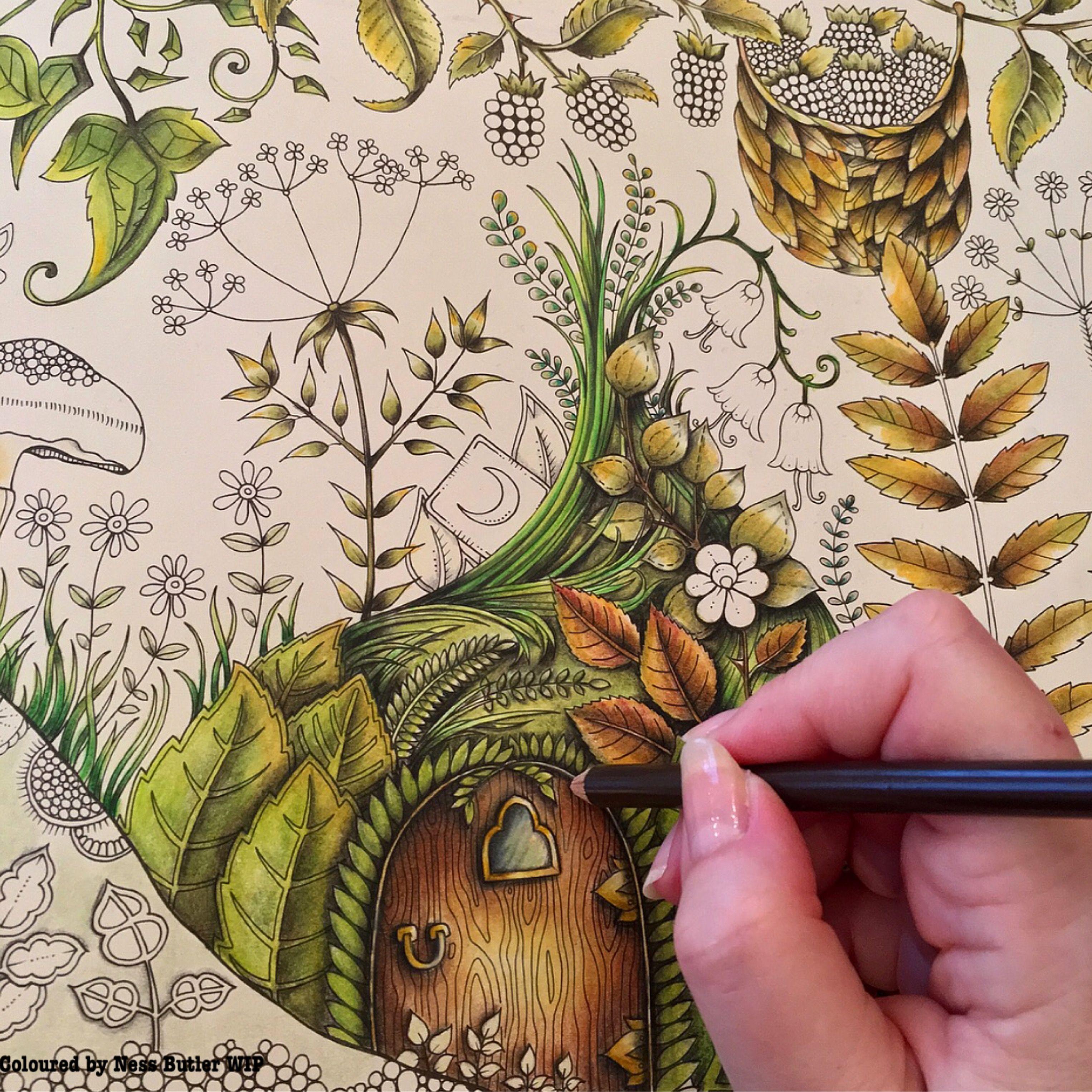 Johanna Basford Enchanted Forest Colouring Book Ness Butler Prisma Color Pencils Enchanted Forest Coloring Book Coloring Book Art Johanna Basford Coloring
