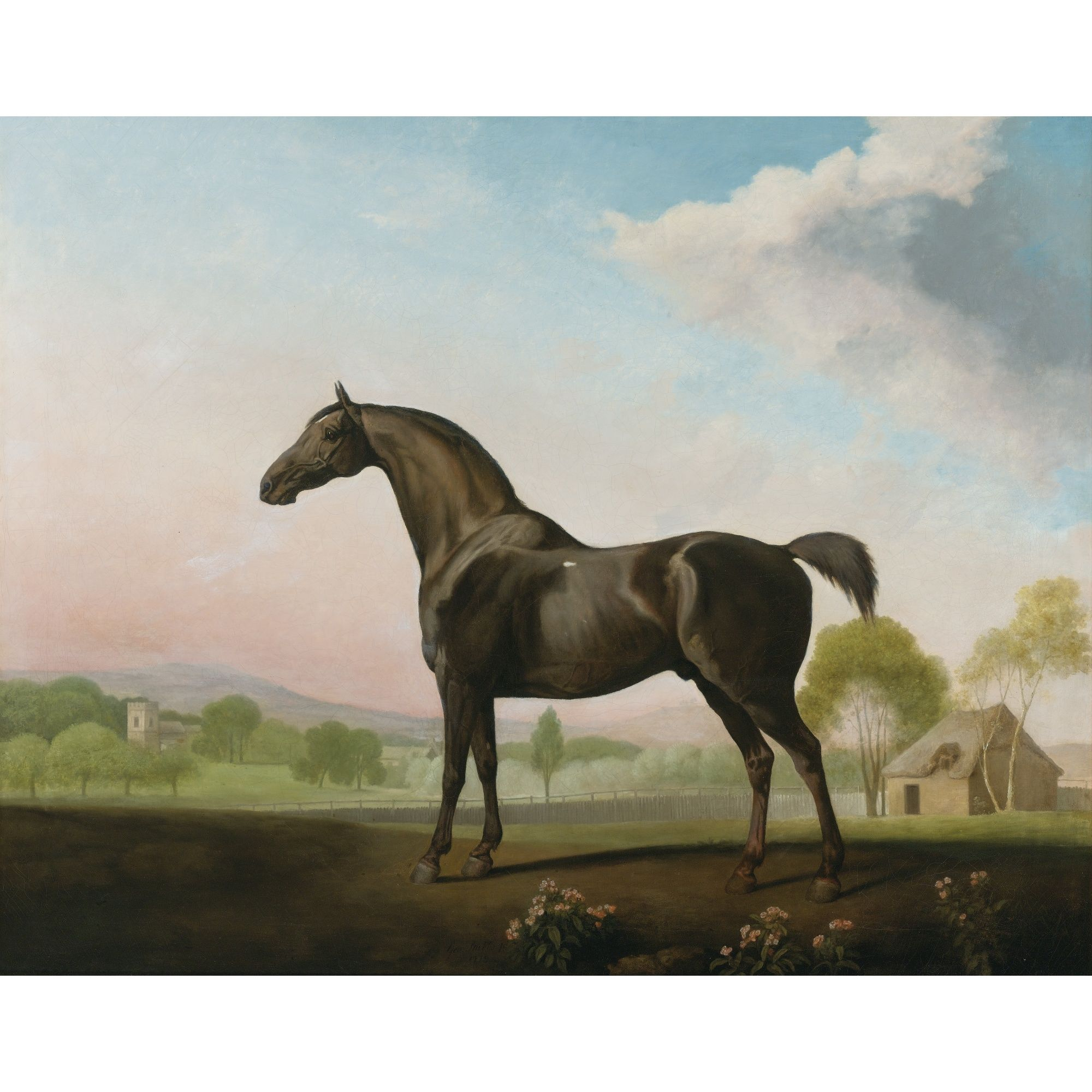 George Stubbs, A.R.A. LORD GROSVENOR\'S SWEET WILLIAM IN A LANDSCAPE ...