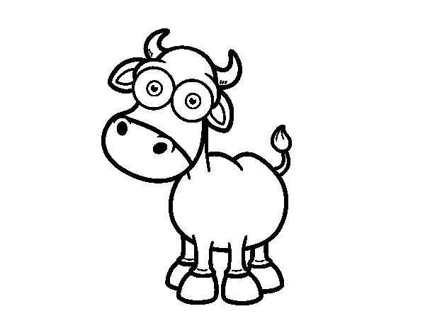 Dibujo de Toro de lidia para colorear | Dibujos de Animales | Pinterest
