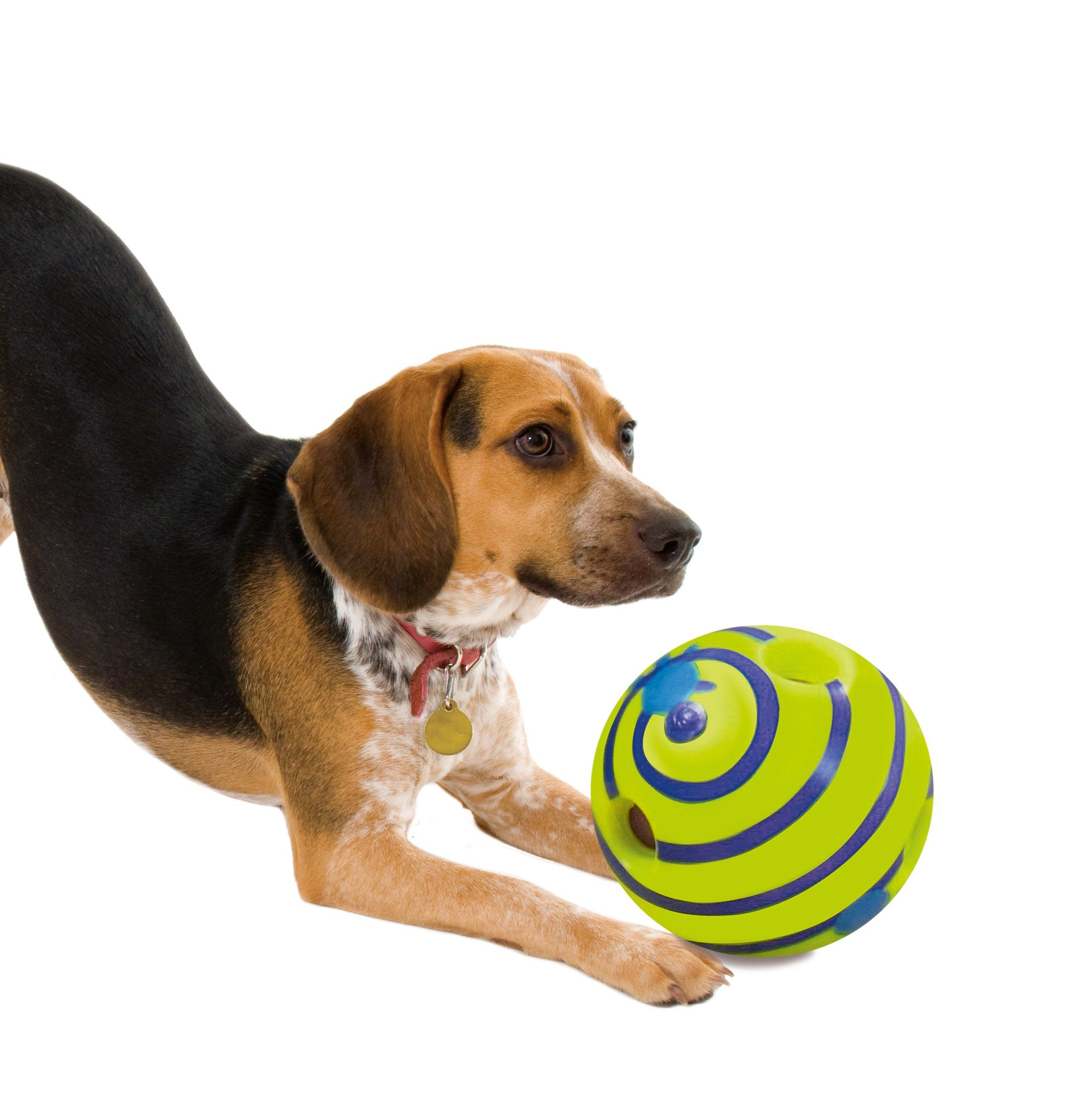 Allstar Innovations Wobble Wag Giggle Ball Dog Toy As Seen On Tv