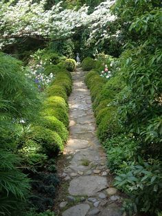 Photo of 15+ Awesome Shade Garden Ideas – Go Travels Plan