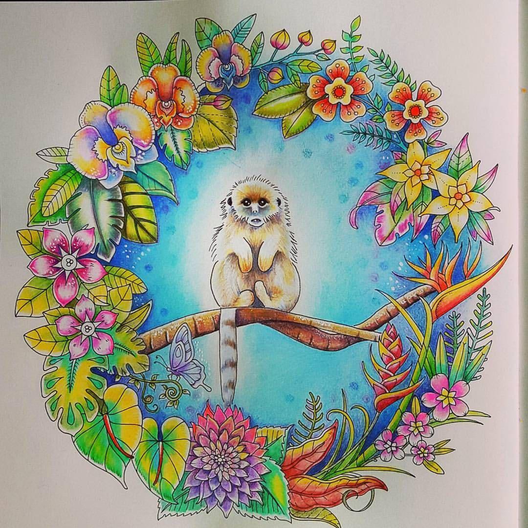 from johanna basford u0027s magical jungle carandache carandacheph