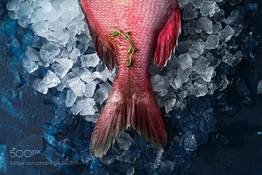 Фуд-съемка для Fish House by simxa