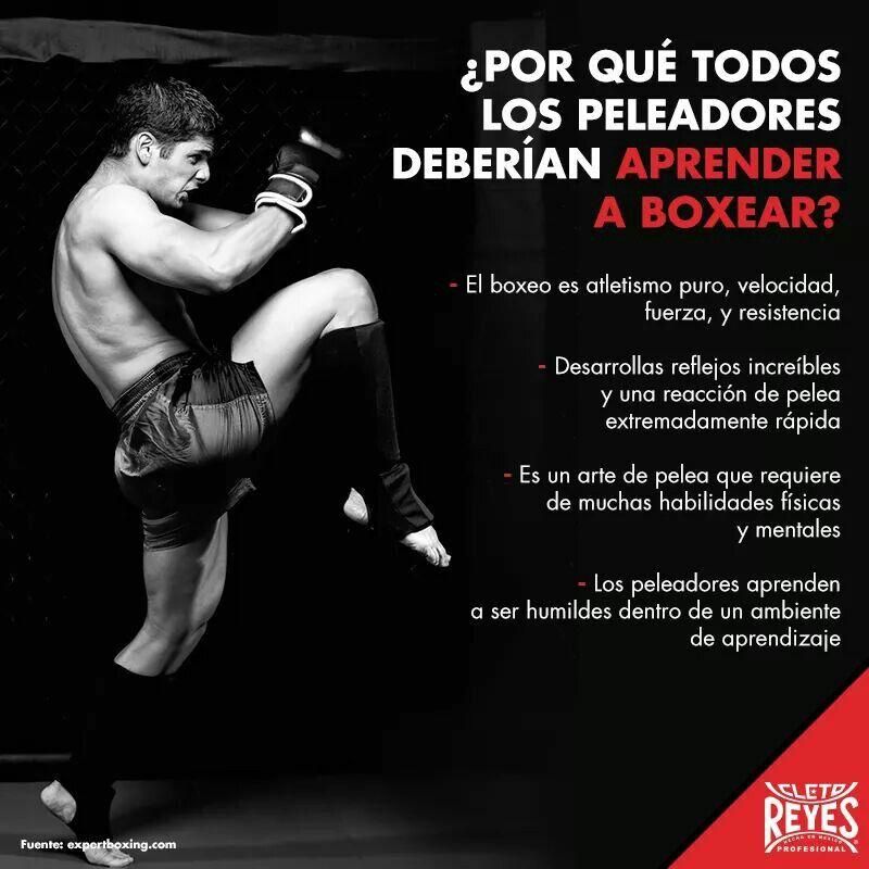 Pin De Yor Roble En Boxeo Entrenamiento De Boxeo Rutina De Boxeo Aprender Boxeo