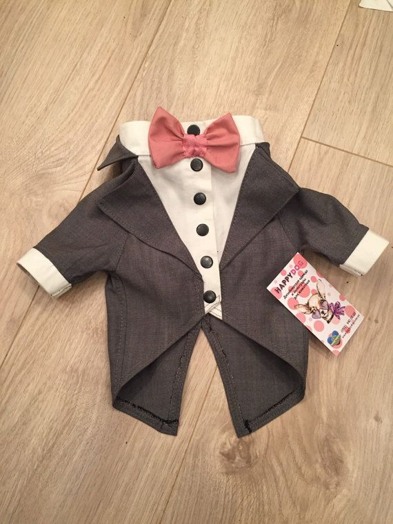 Dog wedding attire in grey Formal suit for dog with bow tie ...
