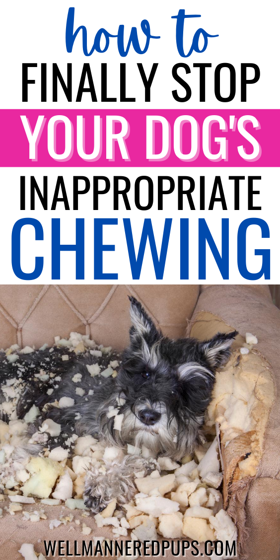 How To Stop Dogs From Chewing Stop Dog Chewing Dog Chews Dog Varieties