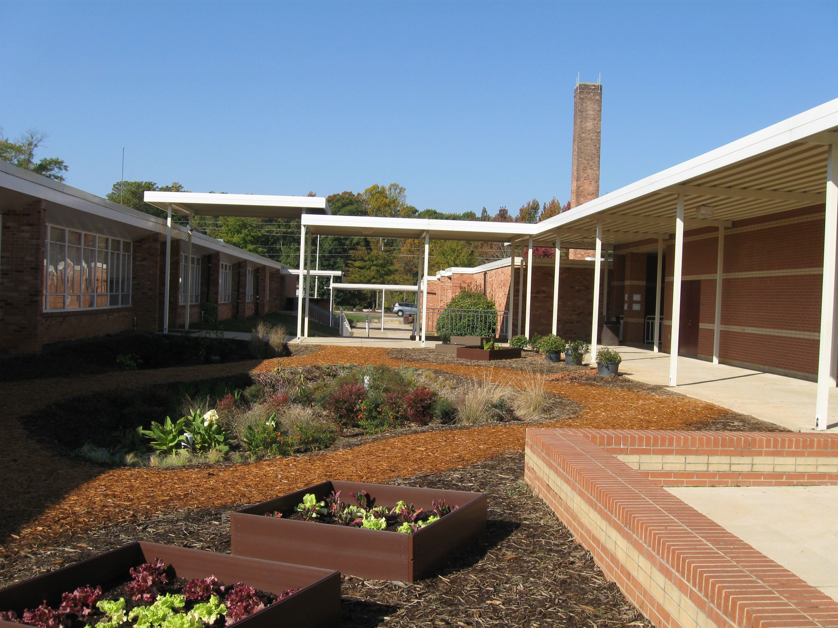Fresh rain garden at West Cary Middle School, NC | Rain in my garden ...