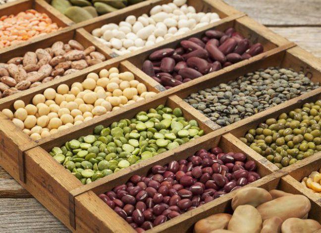 10 High Protein Vegan Foods List