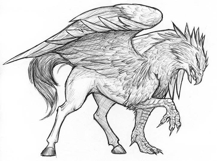 Hippogryph Sketch by gryphonworks.deviantart.com on @deviantART
