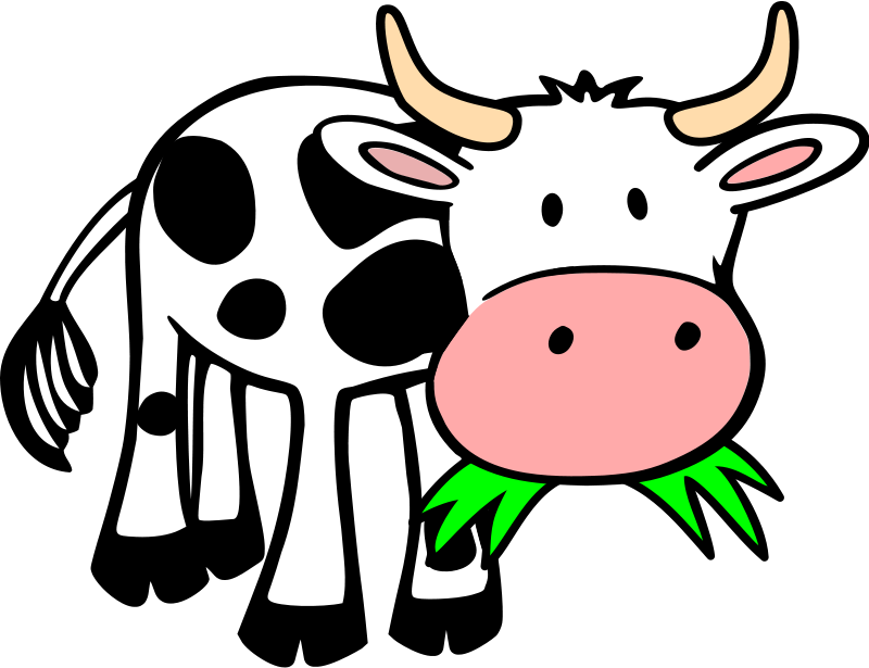 animations cows