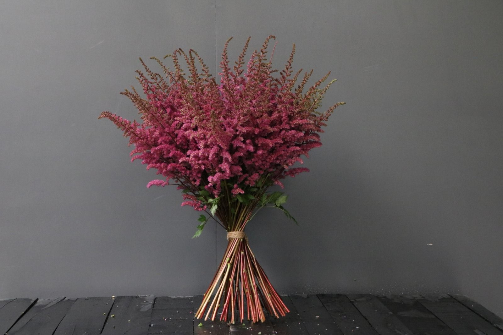 Pink Astilbe Online Flower Delivery Flower Delivery Amazing Flowers