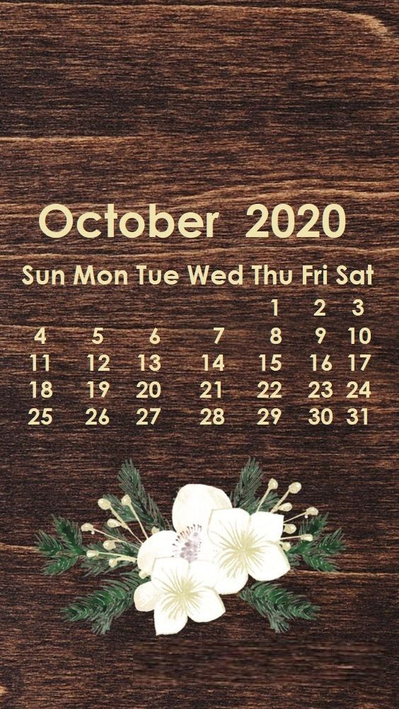 Monthly 2020 iPhone Calendar Wallpaper Calendar