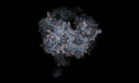 Adenovirus - from #calendario2013 #molecularlab