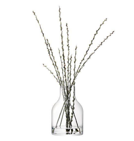 Really Big Extra Large Vases Where To Buy Guide Indoor Plants
