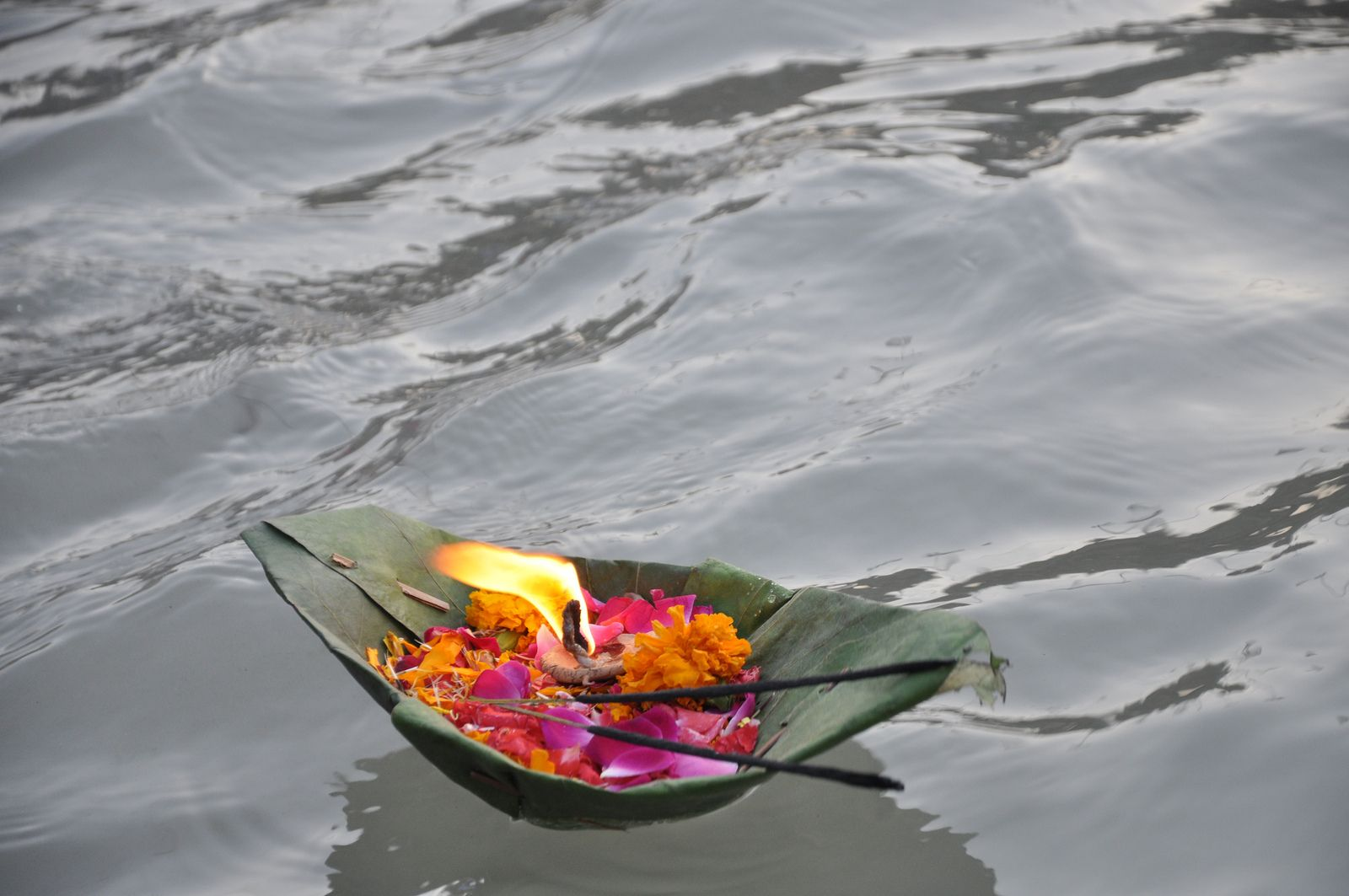 River Ganga. #Travel #India . Almost  5000 people gather at its banks in the evening to perform and witness the ganga arti.