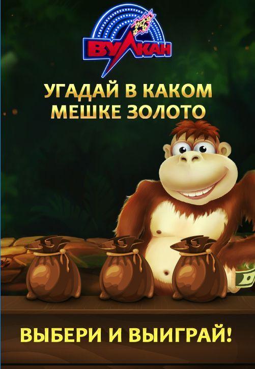Елена казино игровые форум об казино европа