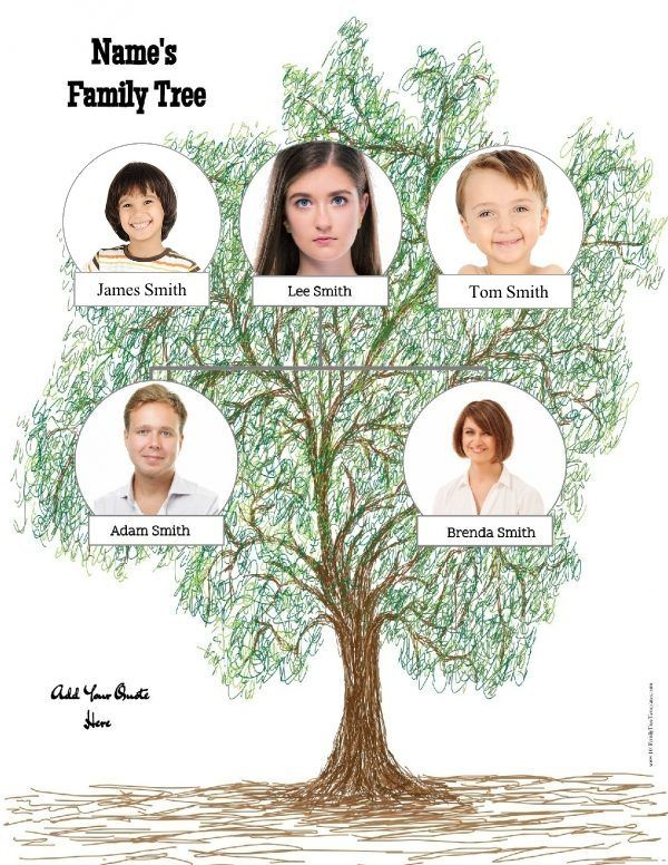 Family tree template Family Tree Templates Pinterest Family - 3 gen family tree template