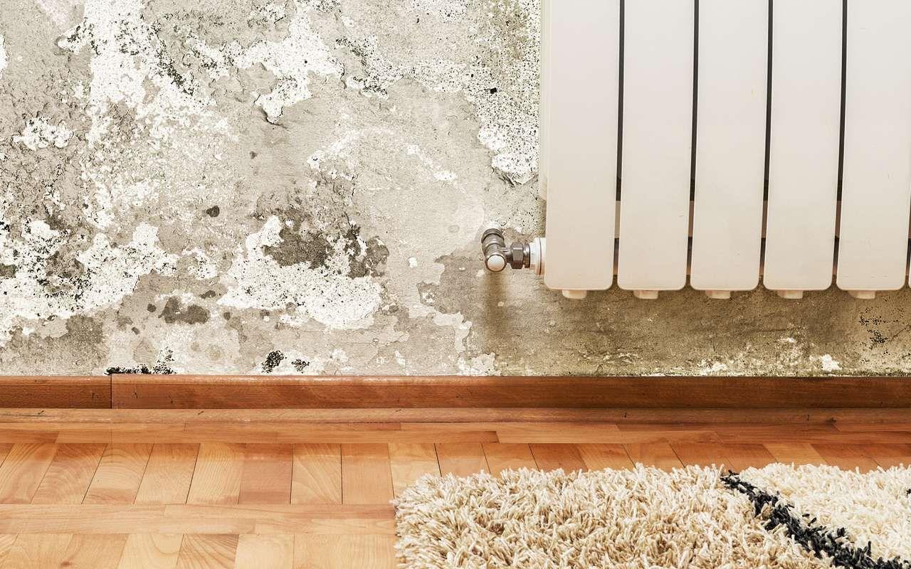Humidite Qui Remonte Par Le Carrelage humidité de la maison : lutter contre les remontées