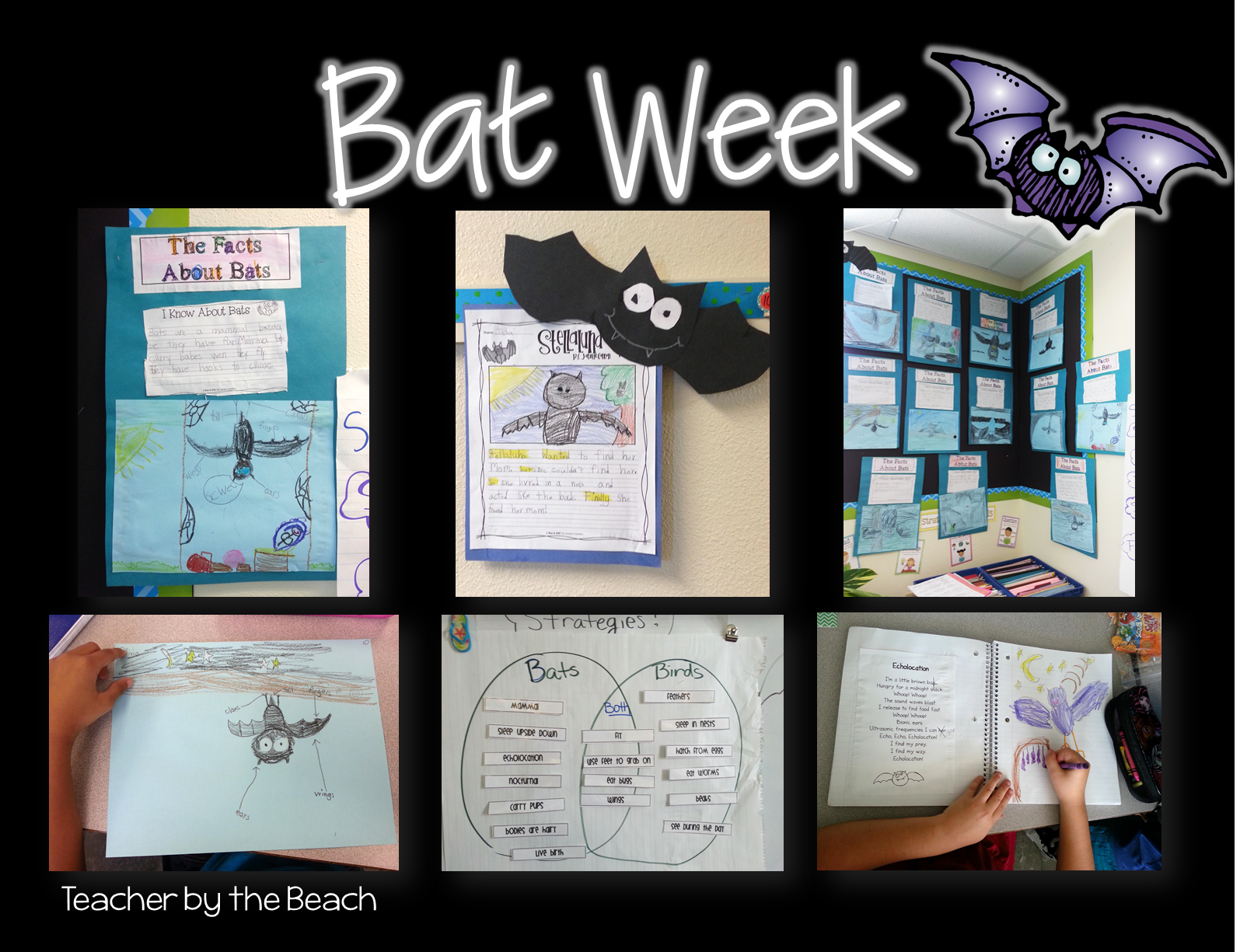 Bat Week Reading Writing And Poetry